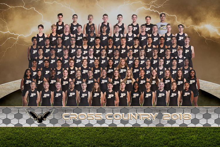 coed cross country 2019