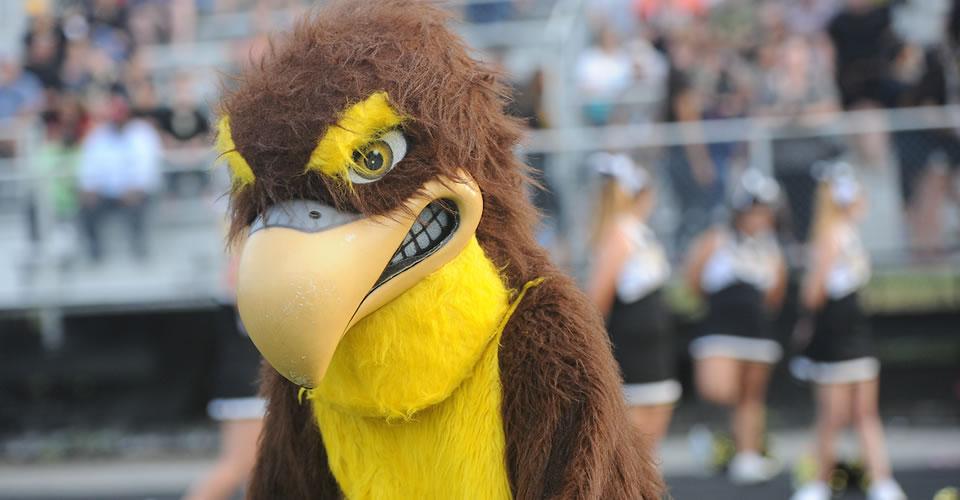 Poolesville falcon mascot