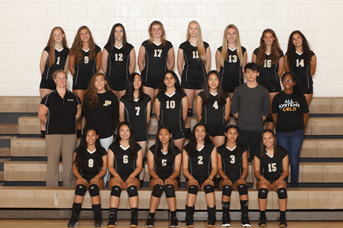 girls varsity volleyball 2019