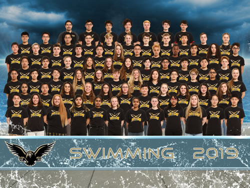 swimming and diving team picture